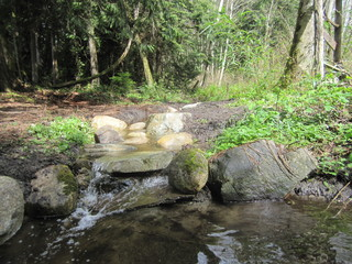 Waterfall Pond building Landscape Land clearing